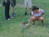 Woman Flashes Pussy to Photo Camera while Touching Snake